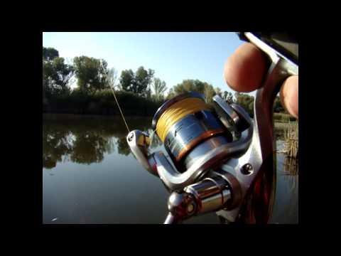 отчеты о рыбалке отводной канал