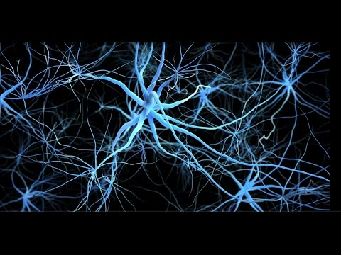 Unlocking the Mysteries of Alzheimer's: BC Alzheimer's Research Award