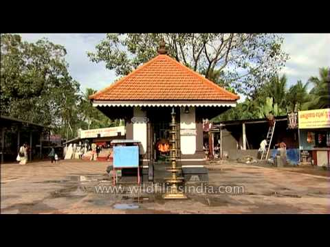 Aranmula Temple Video Temple Kerala Video And