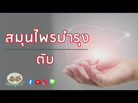 สมุนไพรดูแลตับ l อภัยภูเบศร [2020]