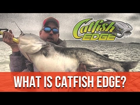 How To Catch Catfish In a Lake In Running Water (and Flooding) Conditions [Live Action] from YouTube · High Definition · Duration:  17 minutes 10 seconds  · 3,000+ views · uploaded on 10/26/2016 · uploaded by Catfish Edge