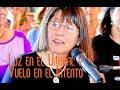 Luz en el Umbral y Vuelo en el Intento por Rosita Ergas