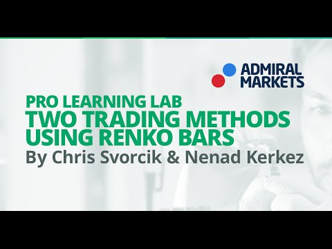 Pro Learning Lab: Two Trading Methods using Renko Bars in Forex Market