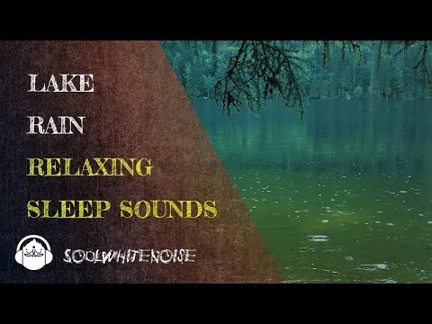 Relaxing Rain Sounds On The Lake To Fall Asleep Quickly And Remain Asleep