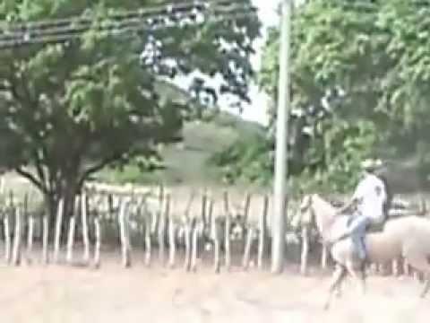 DE SAGA GRATIS CATUABA VAQUEIRO AMENDOIM COM MUSICA BAIXAR UM
