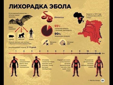 Своими глазами Вирус Эбола 2014 Документальный фильм