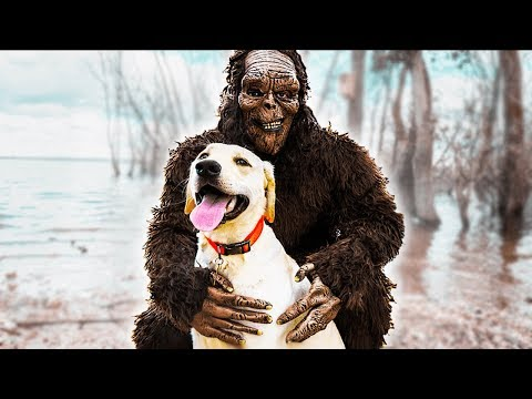 Puppy Logan goes to the wooded lake to play. Logan finds Bigfoot!
