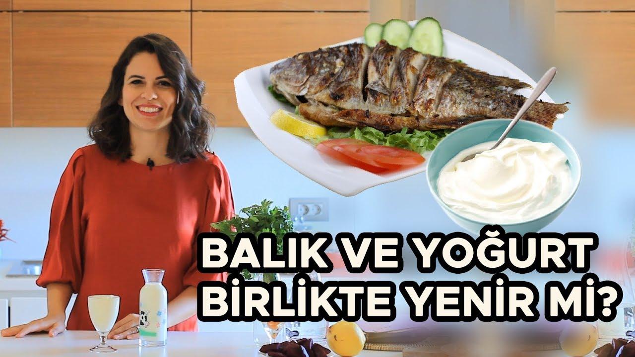 Balik Ve Yogurt Birlikte Yenir Mi Balik Ve Yogurt Zehirler Mi Youtube