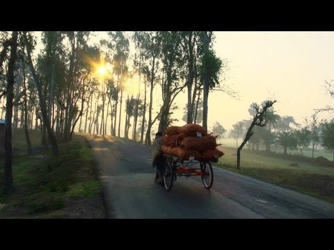 Mesmerizing morning view of a village near Kolkata