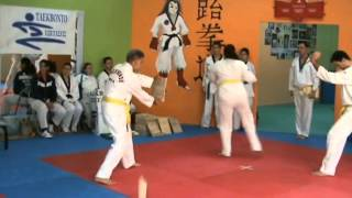 Tae kwon do 12-12