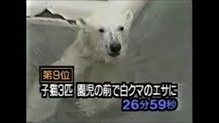 平成国内衝撃映像集1 thumbnail