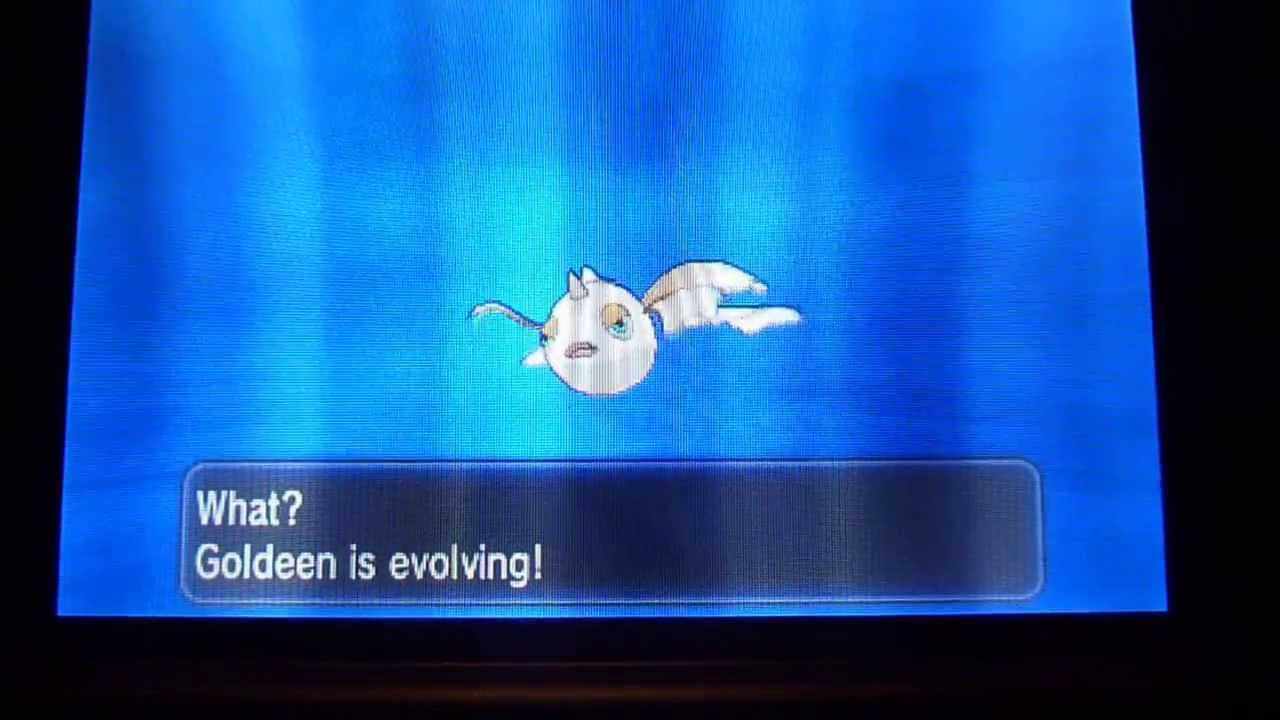 Pokemon X and Y Shiny Goldeen evolves into Seaking - YouTube