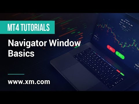 xm.com---mt4-tutorials---navigator-window-basics
