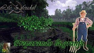 Life is Feudal Tutorial sobre Farming - Guia en español