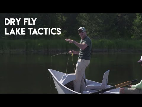 How To Fish A Dry Fly On A Lake