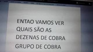JOGO DO BICHO COMO PEGAR UMA CENTENA