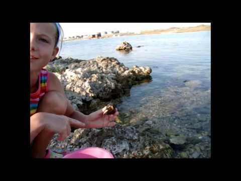 Лучшие пляжи Севастополя. Пляж отеля Мыс