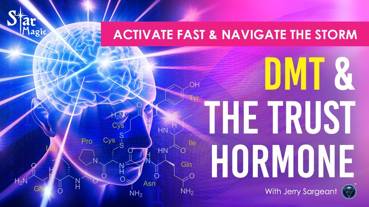 The World Has Gone Crazy | Activate FAST & Navigate The Storm | DMT & The Trust Hormone
