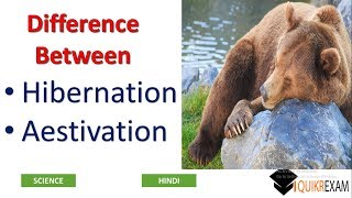 Difference Between Hibernation and Aestivation || Science || Hindi || Quikr Exam