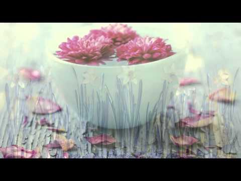 Musica para Bodas: Musica Piano para Bodas, Musicas Romanticas con Piano