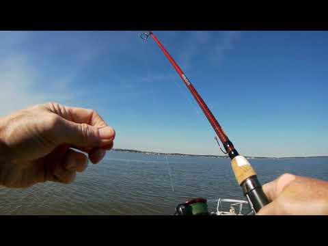 Fishing For Catfish At Lake Conroe TX 2019