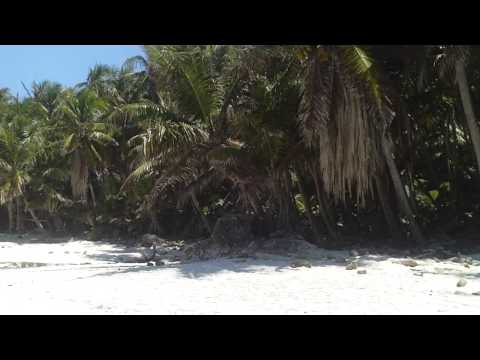 Life on Christmas Island in the Indian Ocean - 7