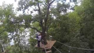 doubleds tree top trekking