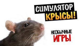 видео Rat Simulator скачать торрент