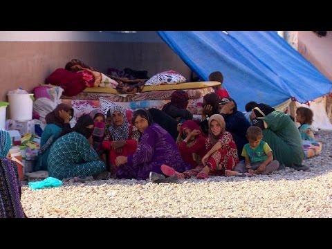Mosul's refugee exodus