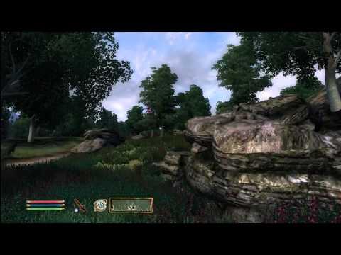Oblivion Daedric Quest - Meridia - Necromancer's Cave