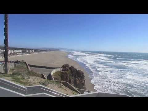 San Francisco Bay Area Wildlife