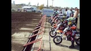 50cc Pee Wee Motocross Race