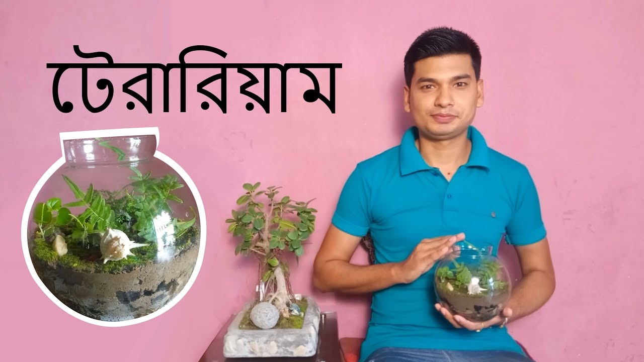 How To Make A Terrarium In Bangla Youtube