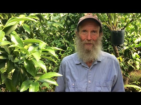 Alan Kapuler: Kinship Garden and Greenhouse Tour