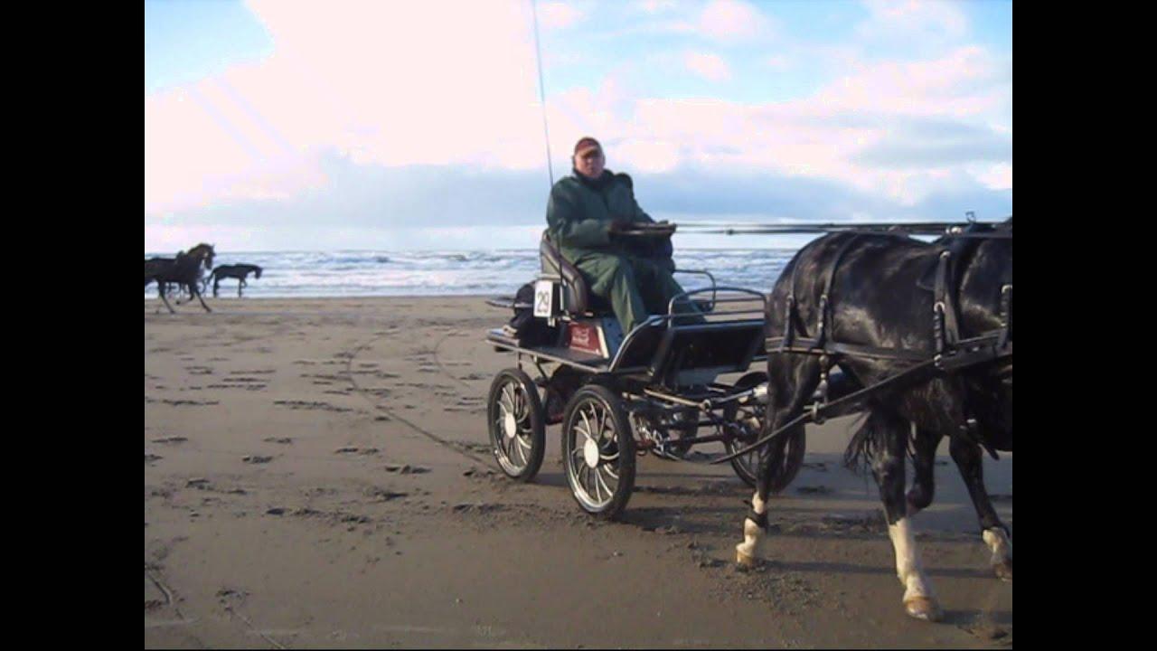Carriage Imports - Marathon Carriage
