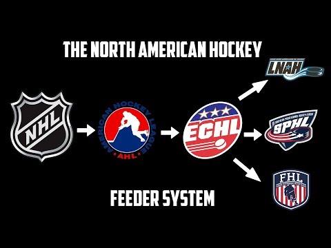 The North American Professional Hockey Feeder System