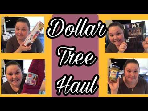 dollar-tree-haul-|-new-items-|-july-11,-2019