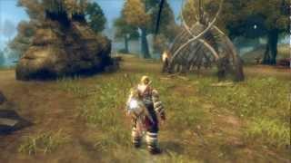Viking Battle for Asgard (PC) Ersteindruck