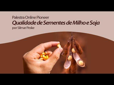 Qualidade de Sementes de Milho e Soja - Palestra Online Pioneer