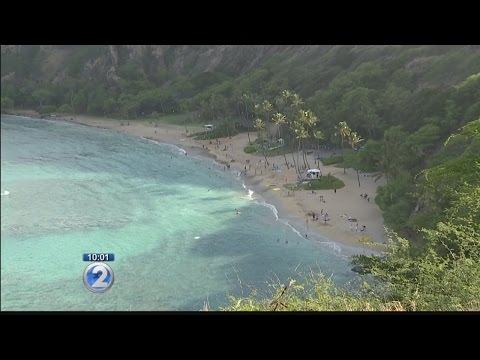 Group pushes for closer look at impacts to one of Oahu
