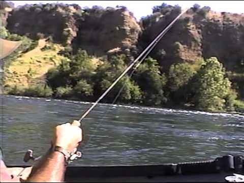Millerton lake fishing sept 2013 doovi for Millerton lake fishing