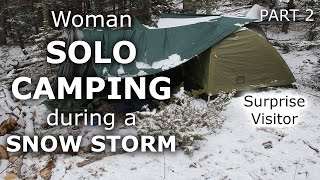 Solo Woman Camping in Colorado Snow Storm - Part 2 - Our Journey :: Episode #29