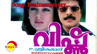 Panineerumay - Vishnu