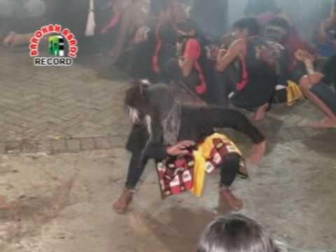 Bantengan - Turonggo Wilis LIVE Njali Sukomoro vol. 16 #barokahabadi