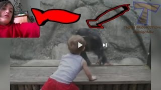 Try not to laugh or smile ape dance off