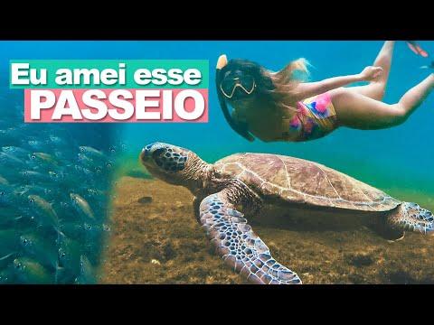 PASSEIO DE BARCO EM FERNANDO DE NORONHA VALE A PENA? | Prefiro Viajar