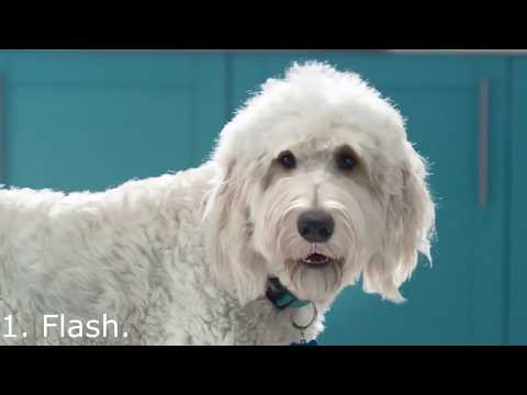 Top 5 Funny UK Adverts 2017