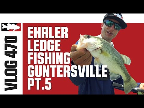 Ledge Fishing On Lake Guntersville With Brent Ehrler Pt. 5 - Tackle Warehouse VLOG #470