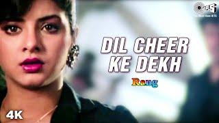 Dil Cheer Ke Dekh | Divya Bharti | Kamal Sadanah | Kumar Sanu | Rang Movie | 90's Romantic Song