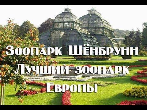 Зоопарк Шёнбрунн в